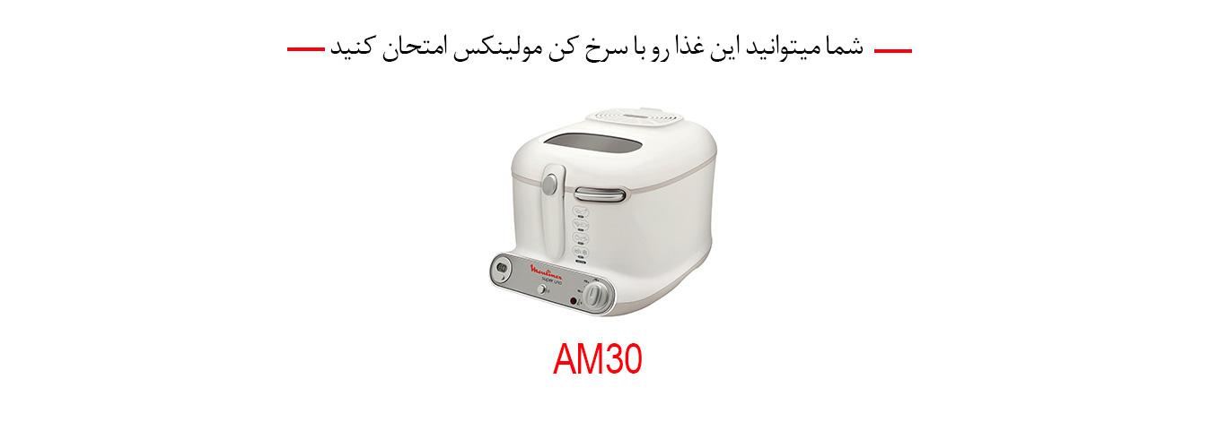 سرخ کن مولینکس AM30